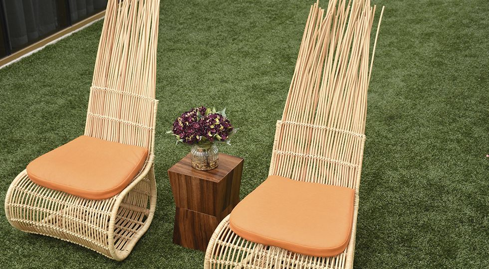 Pavo Real Lounge Chair